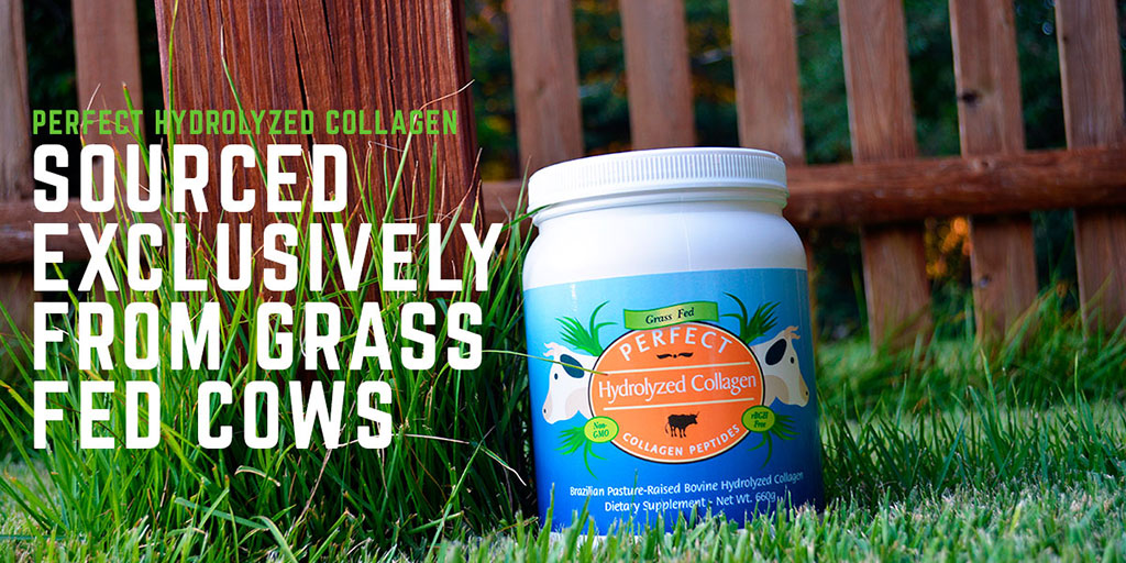Perfect Hydrolyzed Collagen - TWITTER - In Grass