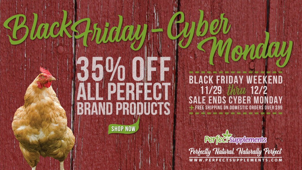 Black Friday/Cyber Monday (BF CM) 2019 - Chicken IMAGE - Twitter Friendly 1024x576